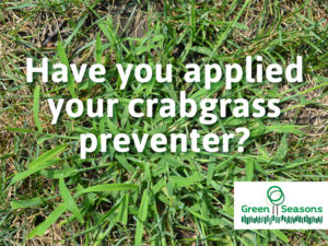 Have you applied your crabgrass preventer?