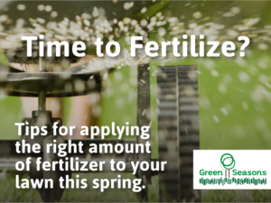 Time to Fertilize