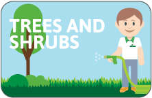 Trees and Shrubs icon