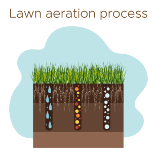 Lawn aeration process for core aeration